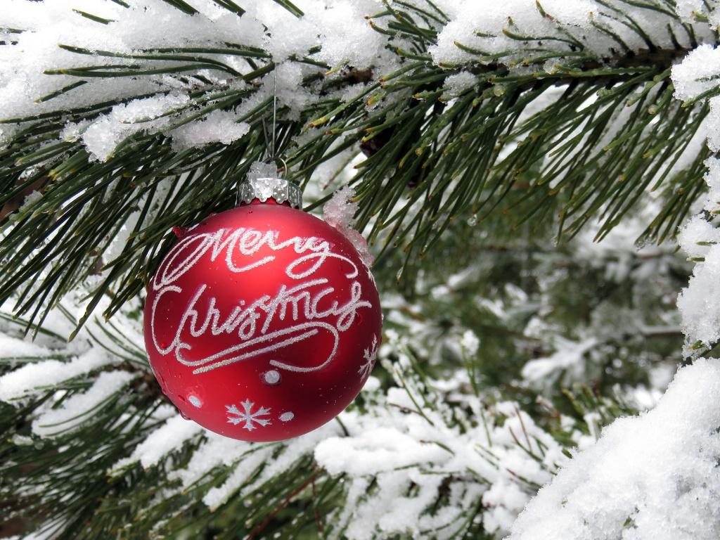 White Christmas - ID: 15670674 © Laura Wald