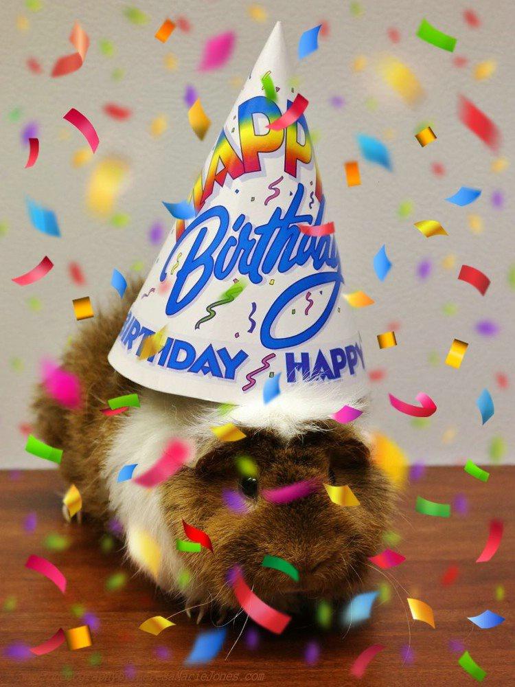 HAPPY BIRTHDAY! - ID: 15670954 © Theresa Marie Jones