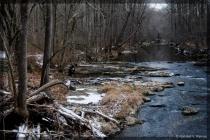Black Hills Stream . . .