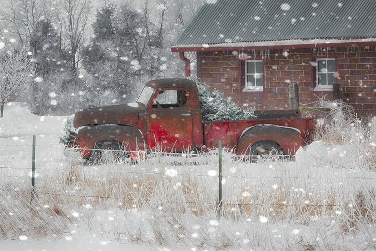 P3A8852xc Winter 2018 - ID: 15671112 © Raymond E. Reiffenberger