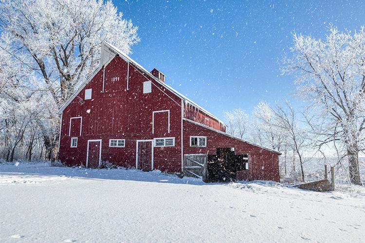 P3A5349c Winter 2019 - ID: 15671178 © Raymond E. Reiffenberger