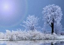 ~ Winter's Magic ~