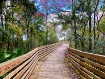 Storey Park Trail