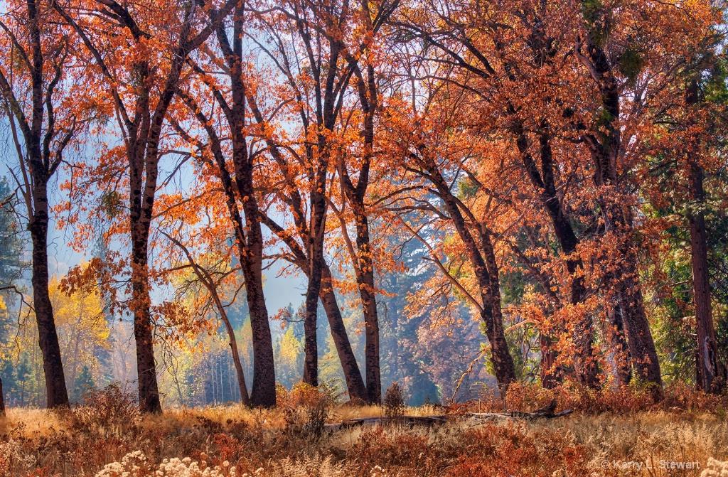 Ablaze - ID: 15673585 © Kerry L. Stewart