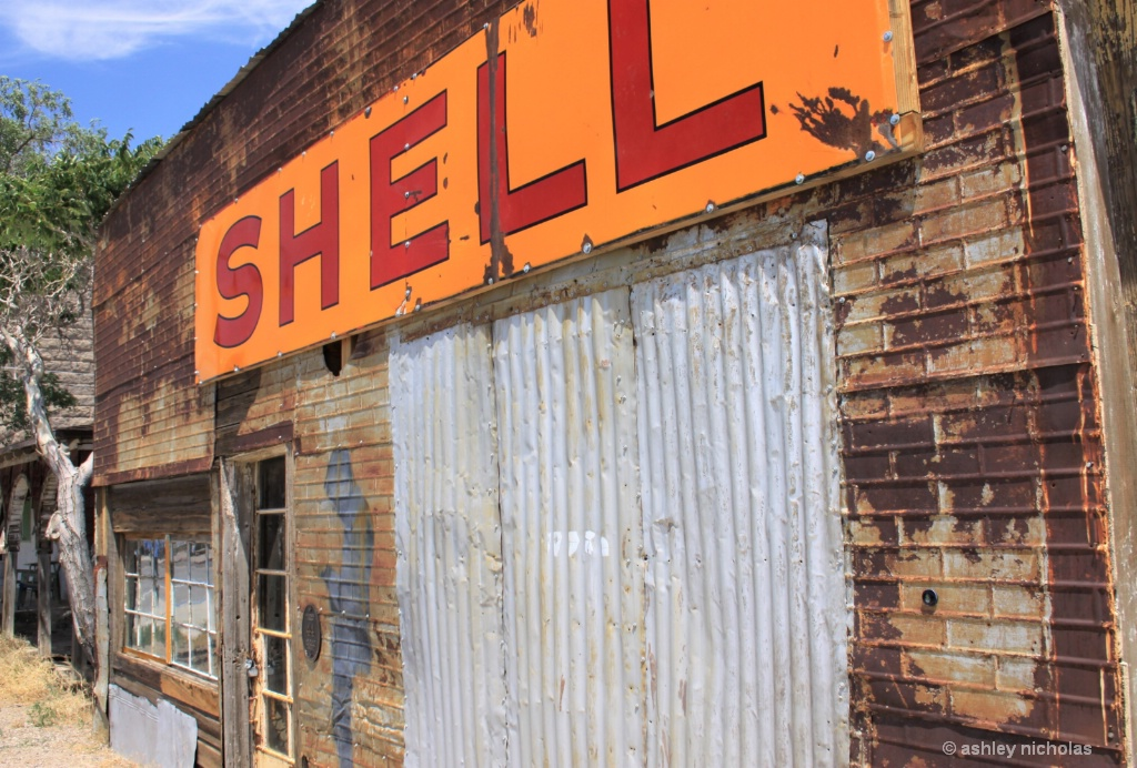 Old Shell - ID: 15674717 © ashley nicholas