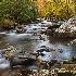 © Peter Tomlinson PhotoID# 15675141: Little Pigeon River, Great Smokies