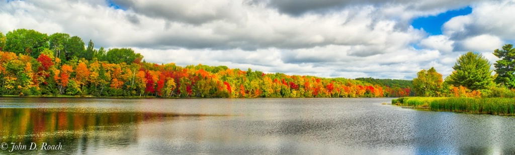 Trees along the Wisconsin River