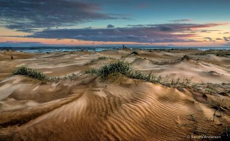 Anna Bay Dunes