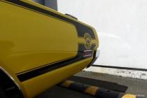 Super Bee yellow