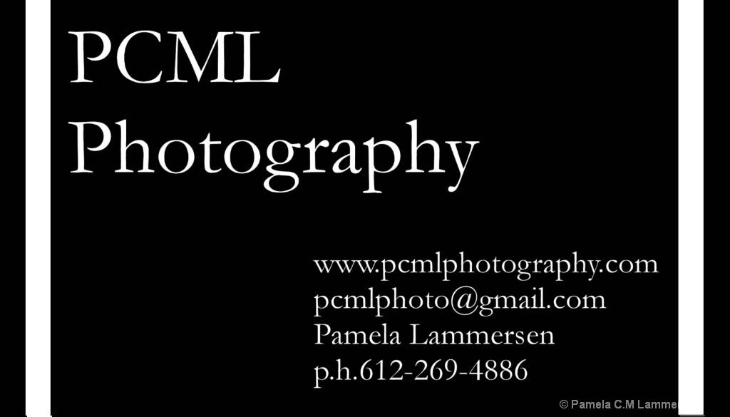 BIZ CARD 2019 - ID: 15675813 © Pamela C.M Lammersen