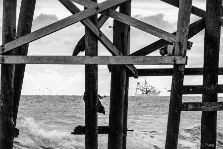 Amelia Island Shrimper