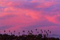 Pink Sky Paradise