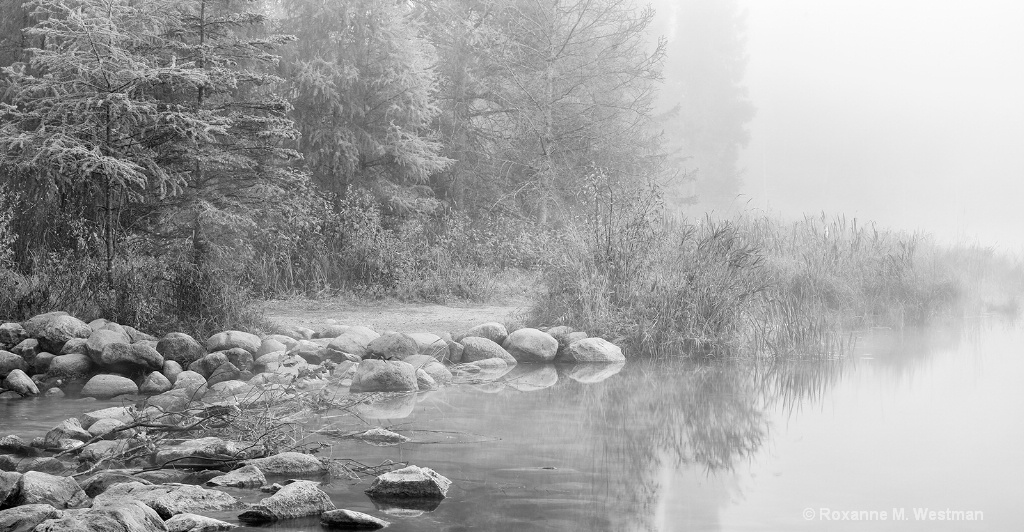 Foggy morning at Mississippi headwaters