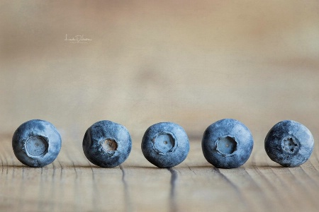 The Eye of the Blueberry