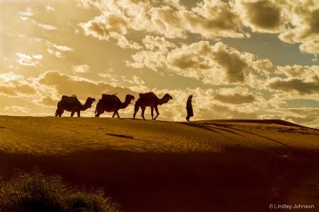 Sahara View