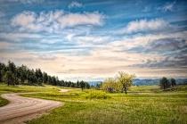 A Drive Through Custer