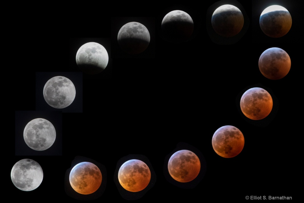 Super Blood Wolf Moon  - ID: 15680159 © Elliot S. Barnathan