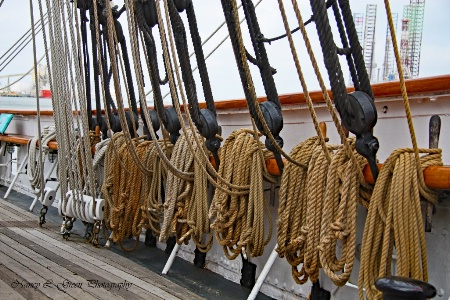 Learnng the Ropes