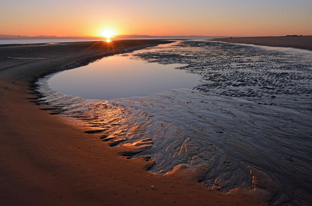 Low Tide - ID: 15687001 © Sheila Faryna