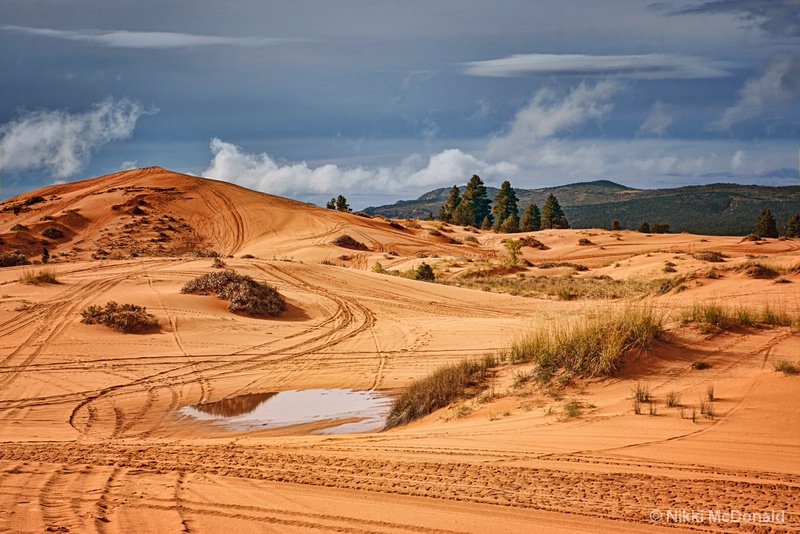 Ridden Dunes