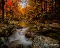Adirondack Gold