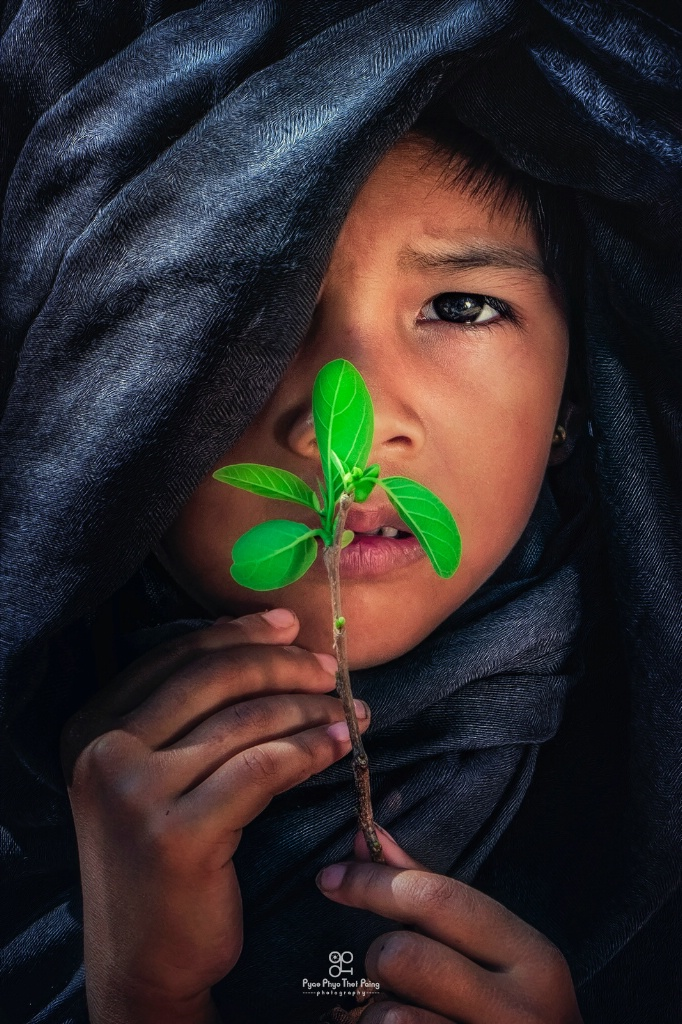 Child and a flower - ID: 15694753 © Pyae Phyo Thet Paing