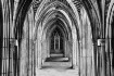 Many Arches