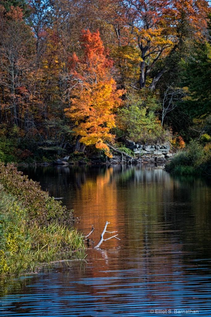 Acadia 30 - ID: 15698263 © Elliot S. Barnathan