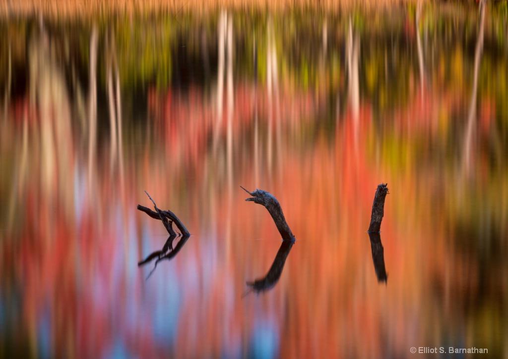 Acadia 23 - ID: 15698270 © Elliot S. Barnathan