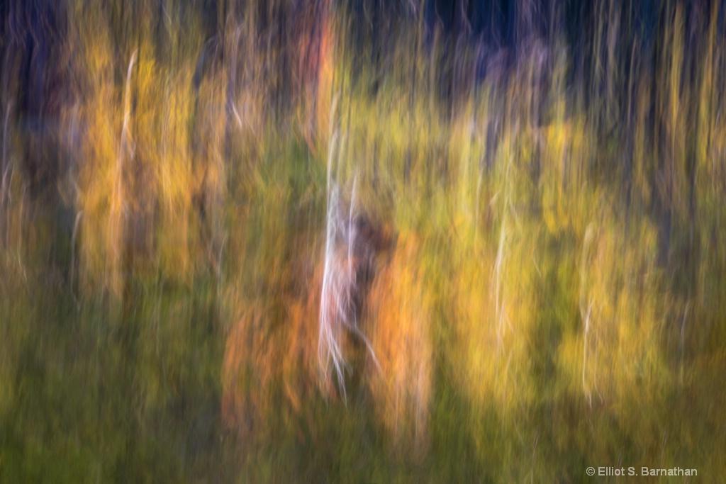 Acadia 18 - ID: 15698275 © Elliot S. Barnathan