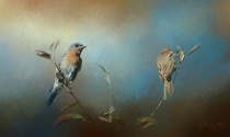 Painting Songbirds