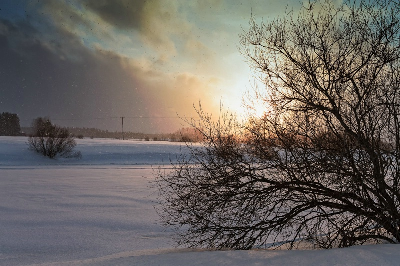 Sunset In The Snowfall