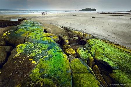Green On Rocks