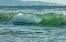 Swami Surf