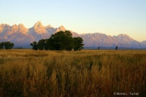 Antelope Flats