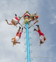 Mexican Pole Dancers