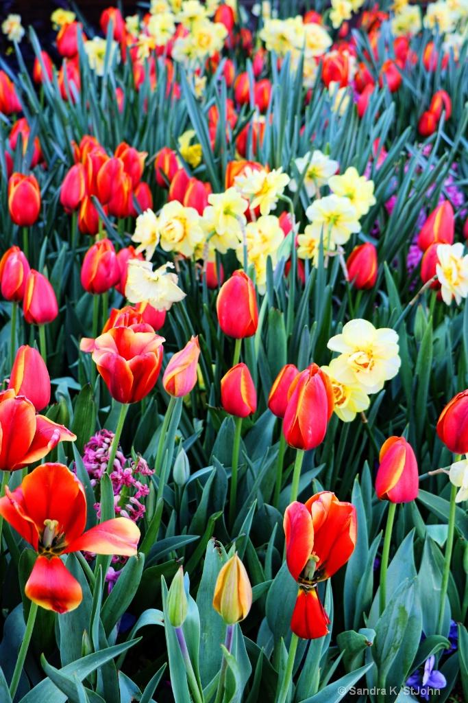 Spring Display Redo - ID: 15710860 © Sandra K. StJohn