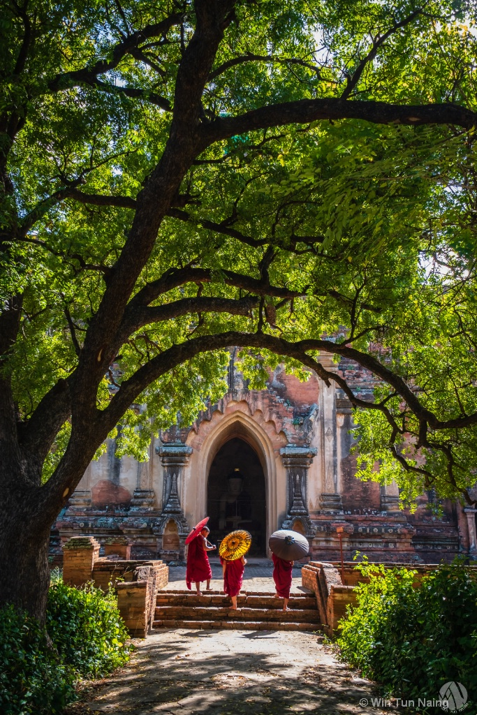 Three novice monks