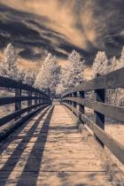 Rexford Bridge in IR